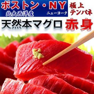 北大西洋産 天然 本マグロ 赤身500g【冷蔵お届け】テンパネ5人前