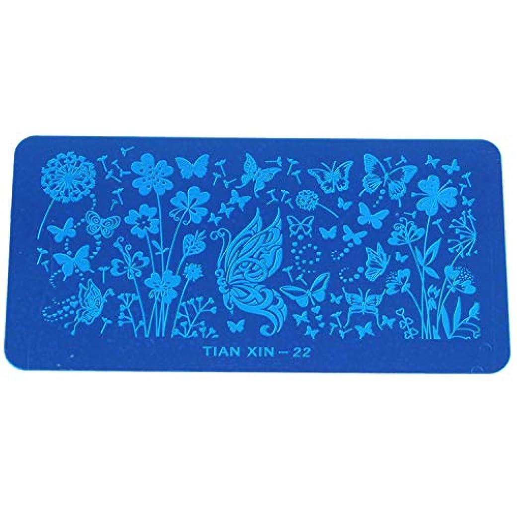 貪欲寛容に渡ってACAMPTAR DIY 青いフィルムプリント長方形プレート 22#
