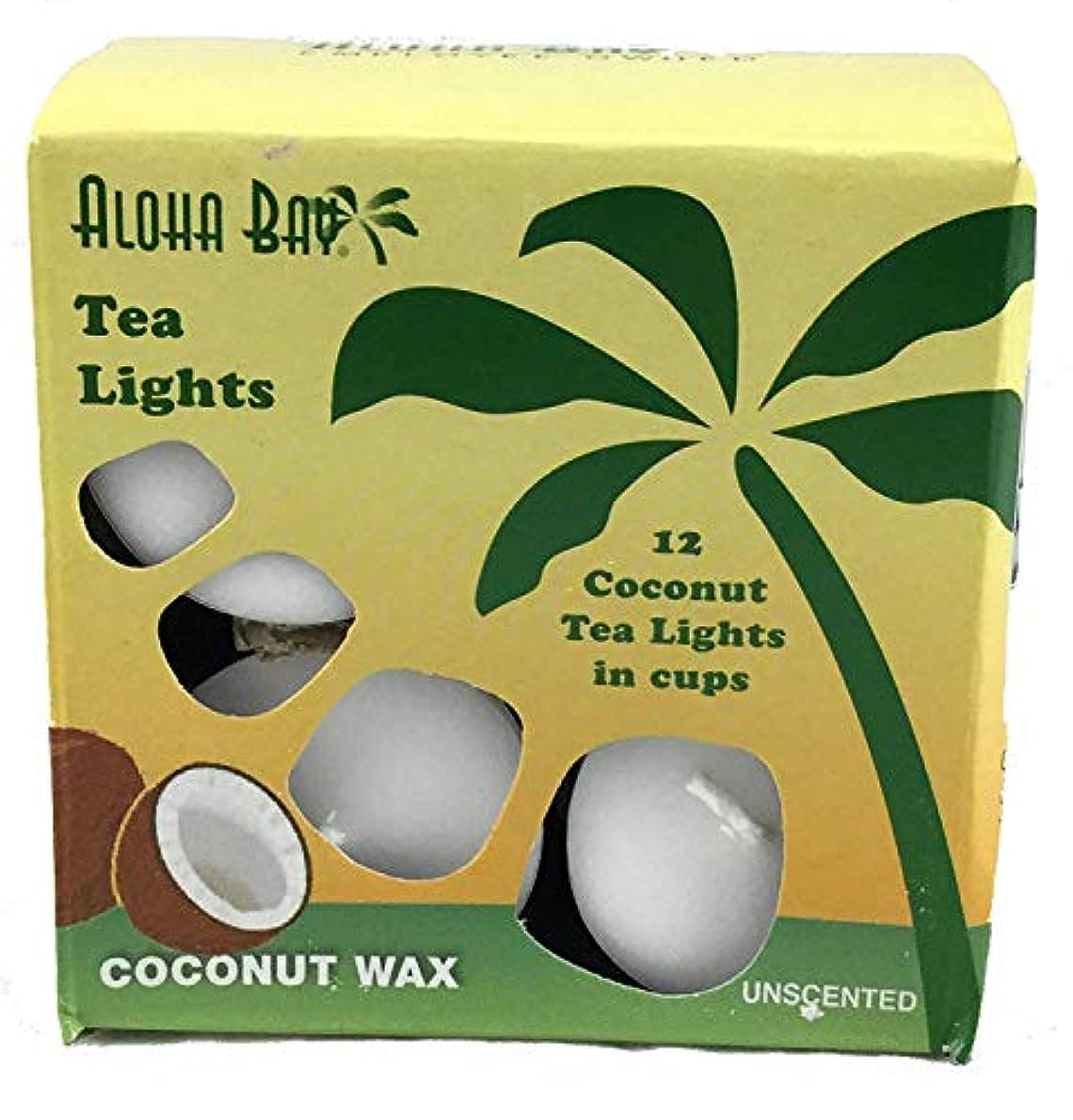 見つけたシットコム彼らのAloha Bay - 100% 植物性パーム ワックス茶軽い蝋燭無香料ホワイト - 12パック