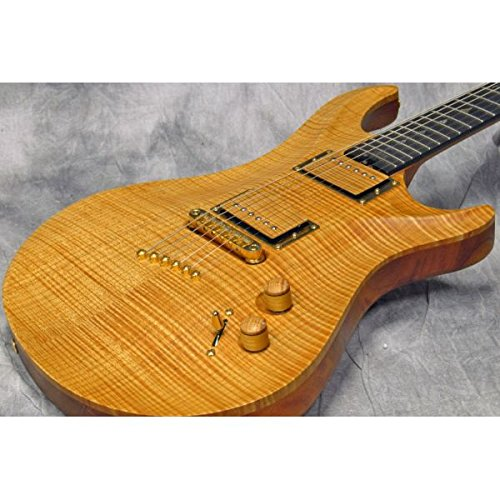 Warrior Guitars ウォーリアー・ギターズ / 20th Anniversary Dran Michael Natural