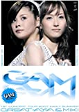 GAM 1stコンサートツアー2007初夏 ~グレイト亜弥&美貴~ [DVD]