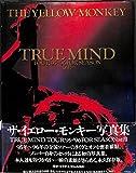 THE YELLOW MONKEY True Mind Tour '95-'96 For Season Still 画像