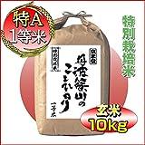 28年産 コシヒカリ 兵庫県 丹波ささ山産 玄米 10kg(5kg×2袋) 7.5割農薬減 特別栽培米 検査一等米