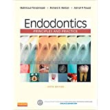 Endodontics - E-Book: Principles and Practice