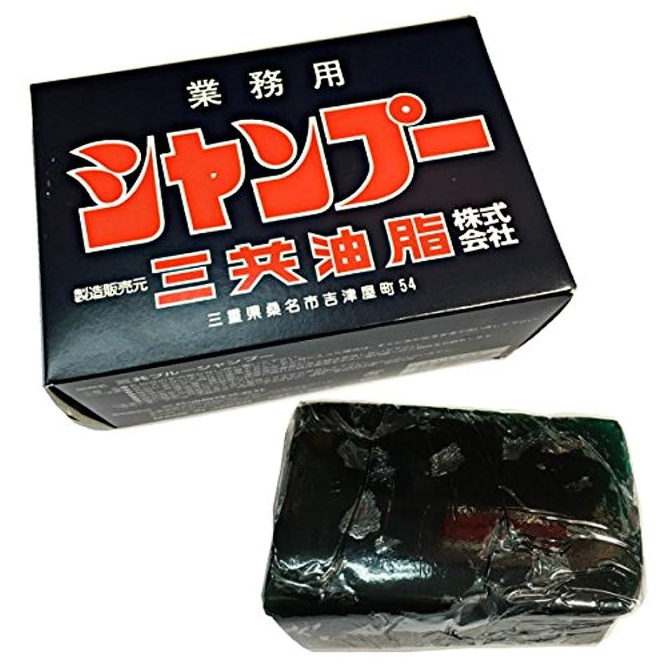 胃ロッド涙三共油脂 三共ブルーシャンプー 容量1800g