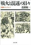 戦火と混迷の日々 悲劇のインドシナ (文春文庫)