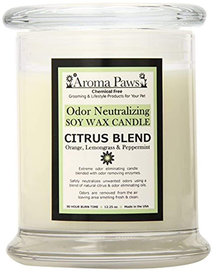 突き刺すバイオリニスト読みやすいAroma Paws Odor Candle, 12-Ounce, Citrus by Aroma Paws