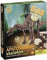 恐竜発掘セット アパトサウルス