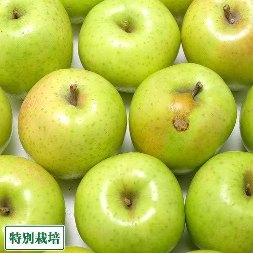 【訳あり】王林 10kg箱 特別栽培 りんご (青森県 さいとうりんご園) 産地直送 ふるさと21