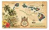 2017年ハワイアンダイアリー/スケジュール帳 Island of Hawaii アイランド・オブ・ハワイ [並行輸入品]