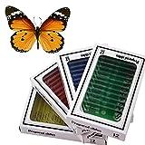 子ども向け科学教育玩具 全48種類、動物、昆虫、植物、花のプラスチック製プレパラートセット+蝶の実物の標本一頭
