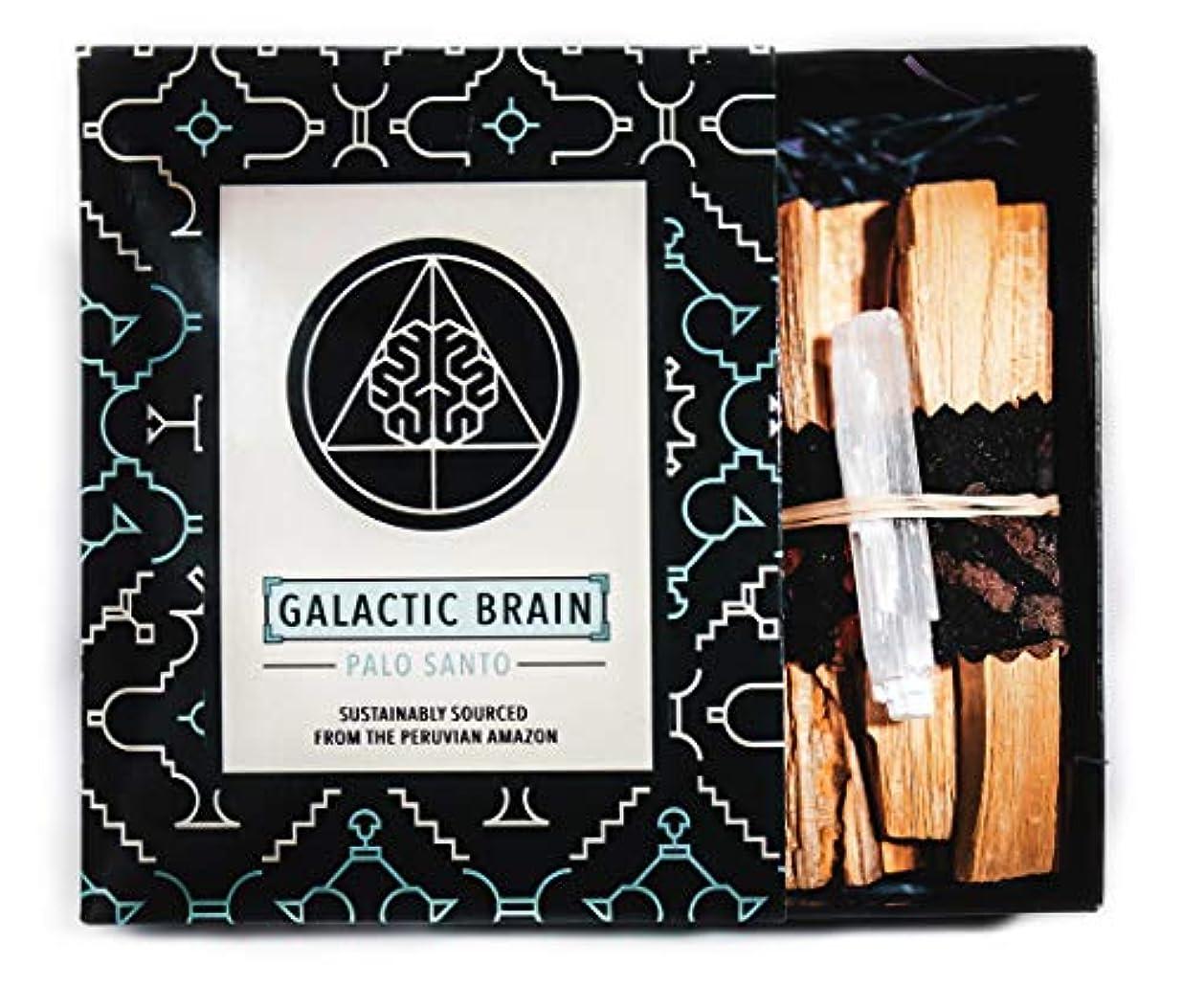 前方へ取得する右GalacticBrainパロサントスマッジスティックキット ご自宅をきれいにしましょう。 瞑想/ヨガの練習を強化。 自然とつながります。 振動を上げましょう。 ギフトセット入りスマッジスティック 12本 (90g) 4インチ