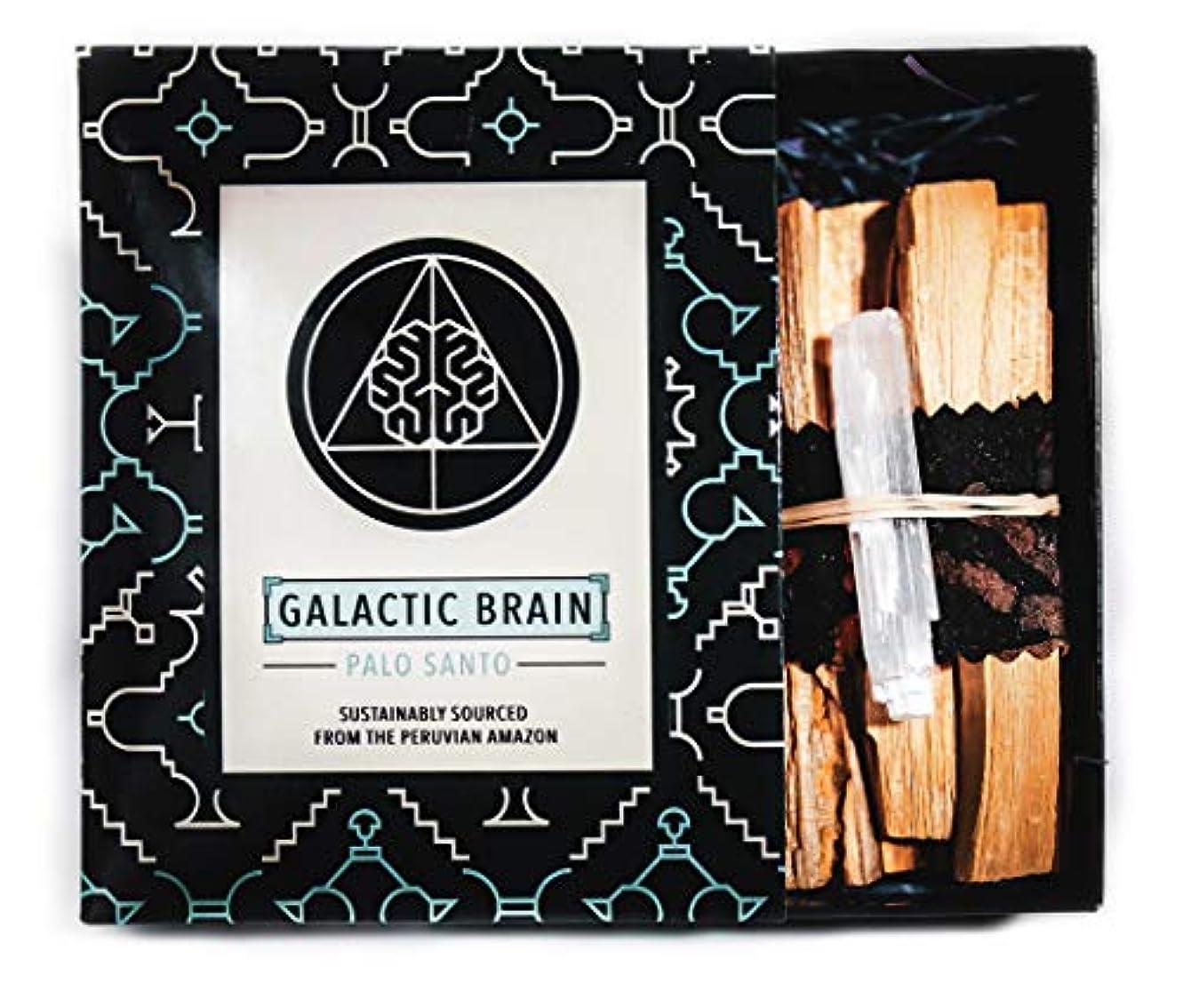 GalacticBrainパロサントスマッジスティックキット ご自宅をきれいにしましょう。 瞑想/ヨガの練習を強化。 自然とつながります。 振動を上げましょう。 ギフトセット入りスマッジスティック 12本 (90g) 4インチ
