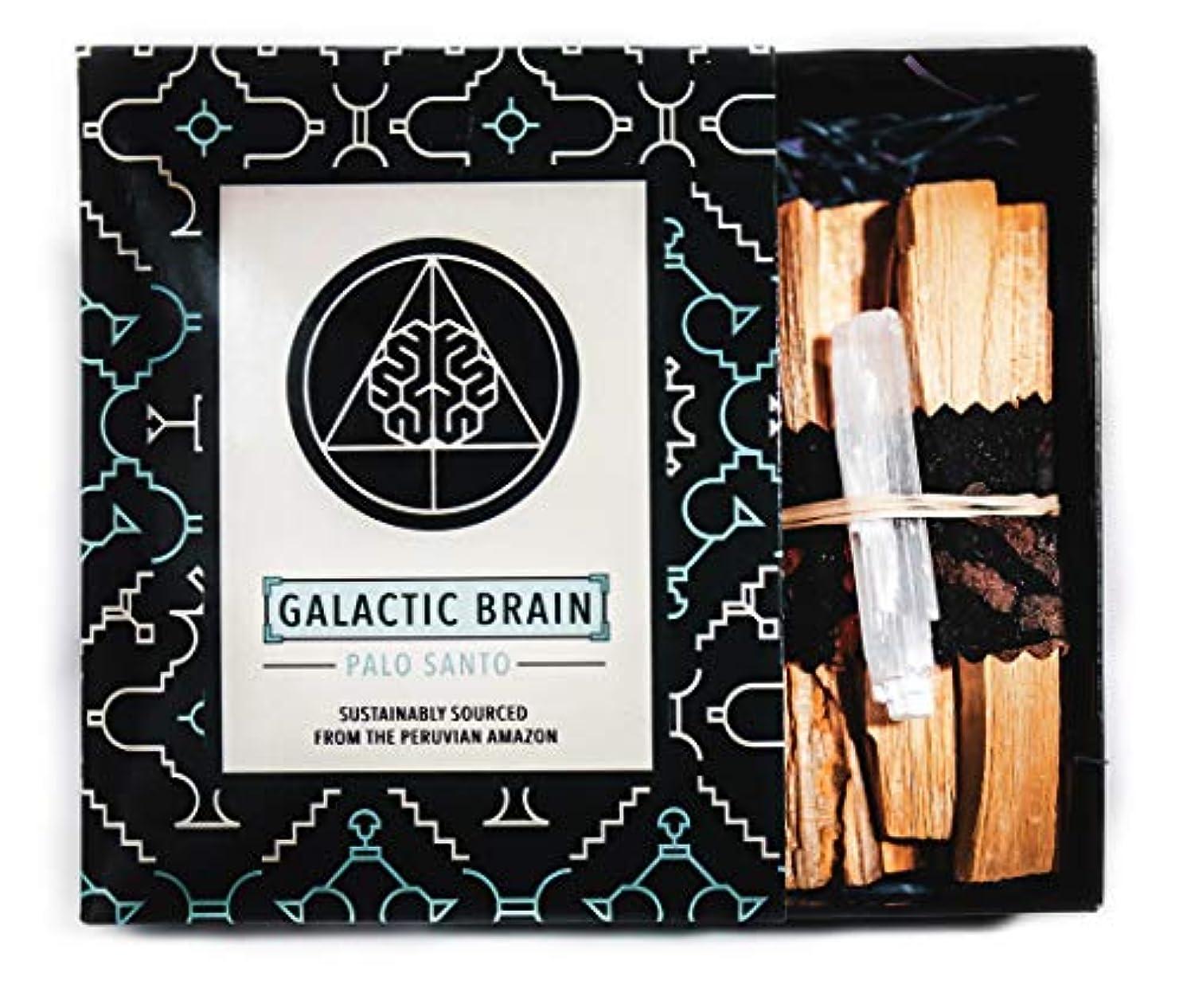 聖なる体現するボイドGalacticBrainパロサントスマッジスティックキット ご自宅をきれいにしましょう。 瞑想/ヨガの練習を強化。 自然とつながります。 振動を上げましょう。 ギフトセット入りスマッジスティック 12本 (90g) 4インチ