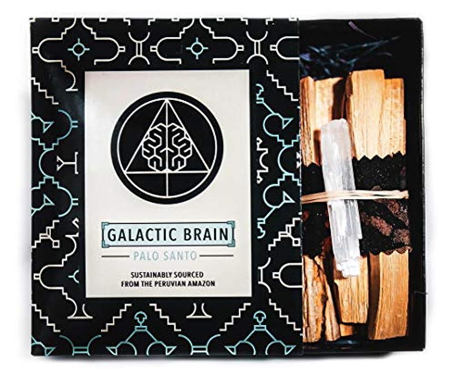 巨大な簡略化する前任者GalacticBrainパロサントスマッジスティックキット ご自宅をきれいにしましょう。 瞑想/ヨガの練習を強化。 自然とつながります。 振動を上げましょう。 ギフトセット入りスマッジスティック 12本 (90g) 4インチ
