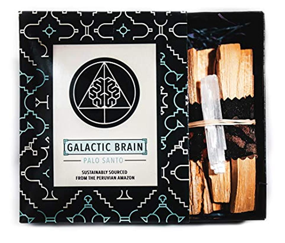 知的確かめるスリンクGalacticBrainパロサントスマッジスティックキット ご自宅をきれいにしましょう。 瞑想/ヨガの練習を強化。 自然とつながります。 振動を上げましょう。 ギフトセット入りスマッジスティック 12本 (90g) 4インチ