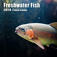 Mini Calendar 2020 Freshwater Fish: High Quality Fish Photos Mini Calendar With Inspirational Quotes each Month and Notes Section | Small Size 8.5x8.5 inches
