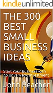 THE 300 BEST SMALL BUSINESS IDEAS: Start Your Business with no or very low investment (English Edition)