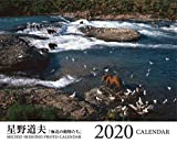 山と溪谷2019年12月号 (別冊付録 星野道夫 2020カレンダー) 画像
