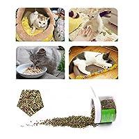 Etopfashion猫 ミント 毛玉 きれいな口 猫のミントグラスパウダー 消化促進 猫の草 猫のスナック 250ML
