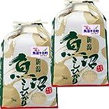 29年産 新潟産 魚沼 コシヒカリ 10kg (5k×2袋) うおぬま 十日町 指定米 (白米精米(精米後約4.5kg×2))