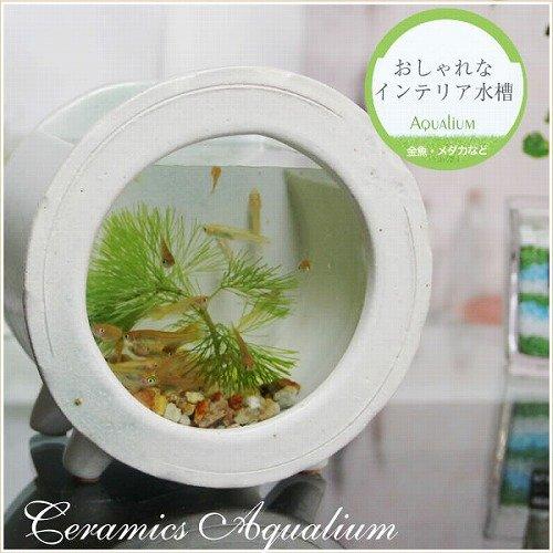 信楽焼 水槽丸型ミニ(白色) 水槽 砂利セット すいそう スイソウ 陶器  金魚鉢 水鉢 陶器 su-0211 (白色)
