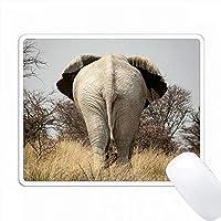 ナミビア、エトーシャNP、オケフォンミンウォーターホール。象の背面図。 PC Mouse Pad パソコン マウスパッド
