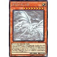 青眼の亜白龍 ホログラフィックレア 遊戯王 レアリティコレクション 20th rc02-jp000