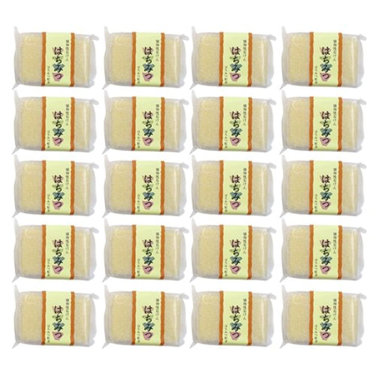 媒染剤テメリティポップ植物性ソープ 自然石けん はちみつ 80g×20個セット