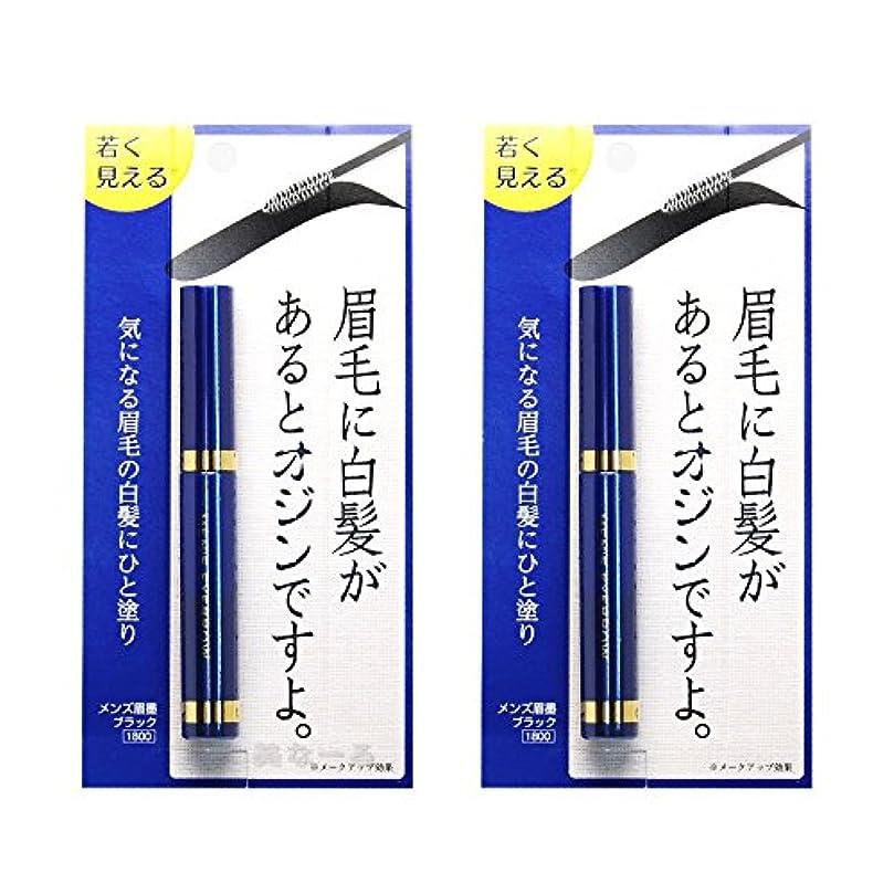 請求独創的提供されたメンズ眉墨 2個セット
