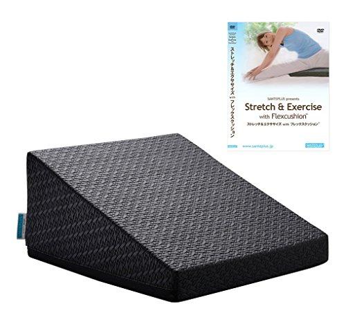 サンテプラス フレックスクッション(ブラック) & DVDセット FC-A402K-DV ブラック
