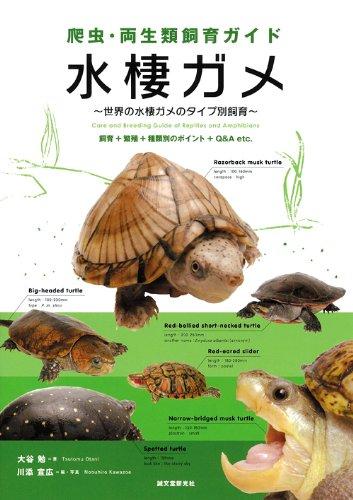 爬虫・両生類飼育ガイド 水棲ガメ—世界の水棲ガメのタイプ別飼育 飼育+繁殖+種類別のポイント+Q&A etc.