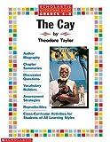 The Cay: Literature Guide (Literature Guides)