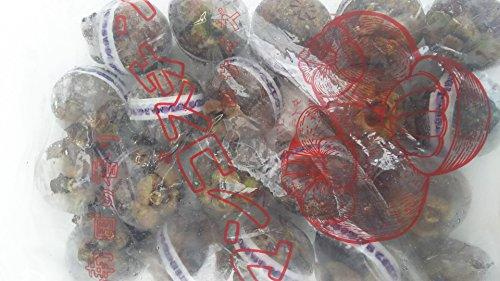 カルナ食品 マンゴスチン 20個入 冷凍