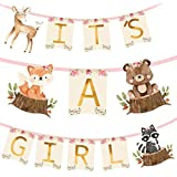 Woodland Animal Creatures ITS A GIRL Banner for Baby Shower Decoration Deer, Fox, Raccoon and Bear/Wild One, Boho Themed Part