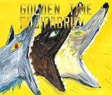 ゴールデンタイム (初回生産限定盤) (DVD付) (特典なし)