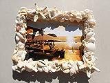 Mermaid jewelry 白い貝殻 サンゴ ヒトデ フォトフレーム 写真たて ハンドメイド ピクチャーフレーム ハワイインテリア ディスプレイ