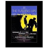FLAMING LIPS - Alexandra Palace London 1st July 2011 Mini Poster - 28.5x21cm