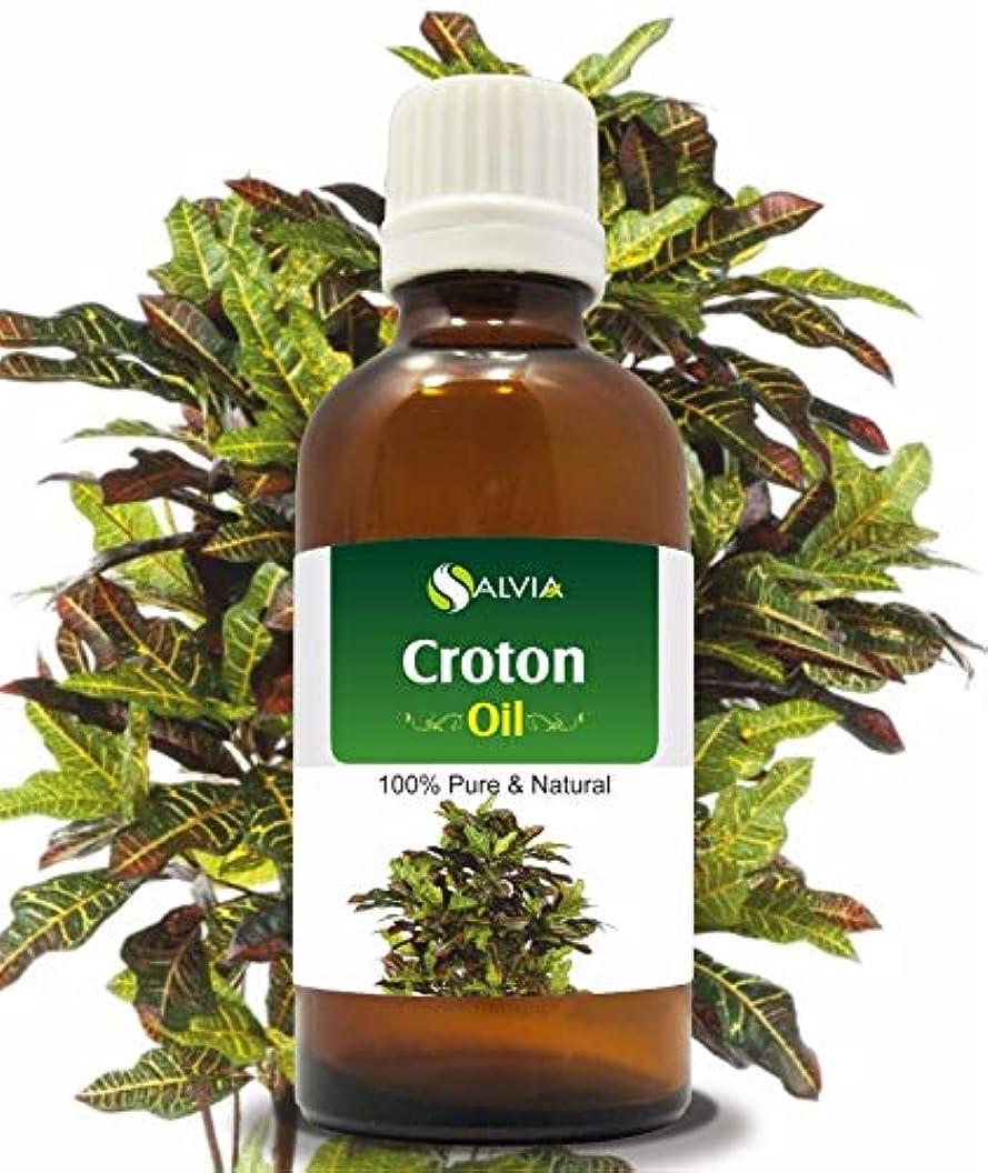 柱不屈沿ってCroton (Crotonis Oleum) 100% Natural Pure Carrier Oil 30ml