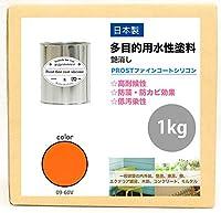 屋外用 多目的用 水性塗料 09-60V サンライズオレンジ 1kg/艶消し 内装 外装 壁 屋内 ファインコートシリコン つや消し 多用途