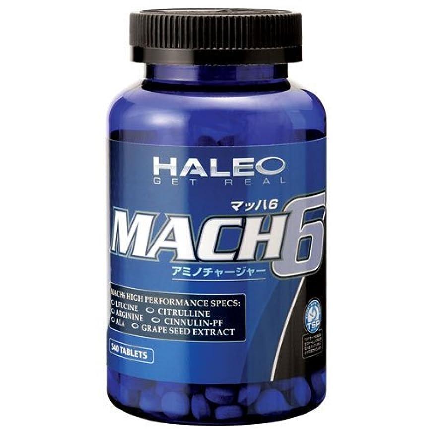 広告主おそらくハックHALEO(ハレオ) MACH6 540タブレット [その他]
