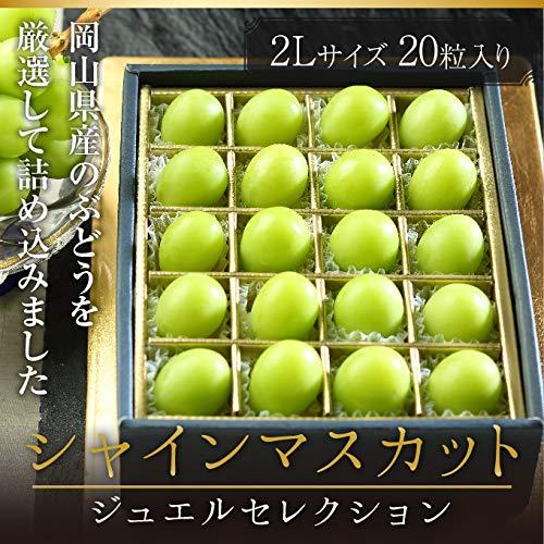シャインマスカット ジュエルセレクション 岡山県産 特秀 2Lサイズ 20粒