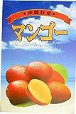 期間限定 贈答用 沖縄完熟マンゴー 極 2玉~3玉 (合計1kg程度) 熱帯資源植物研究所 濃厚で甘い果汁たっぷりのマンゴー 南国フルーツの女王