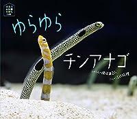 ゆらゆらチンアナゴ (ほるぷ水族館えほん)
