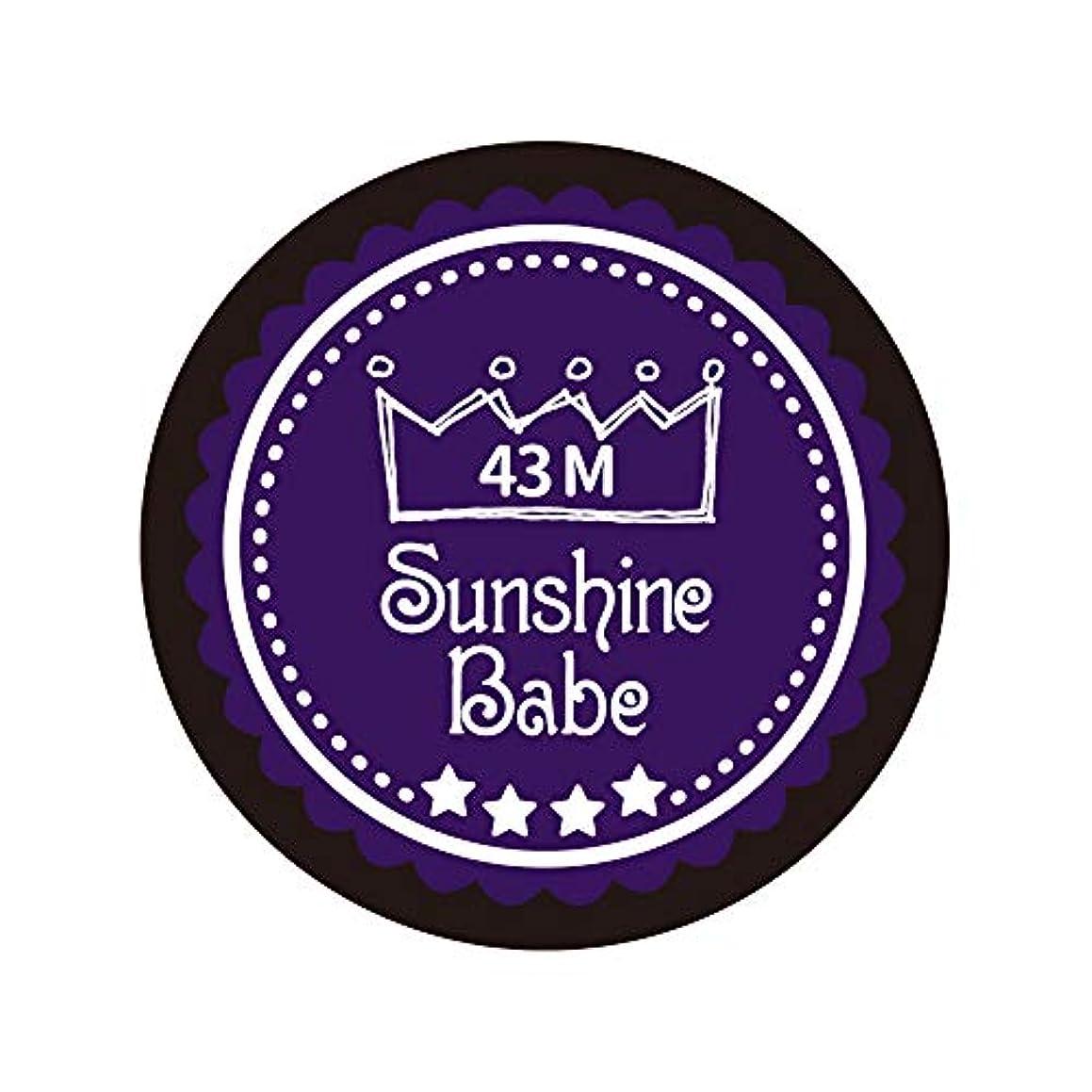振る舞う一貫性のない代替Sunshine Babe カラージェル 43M オータムウルトラバイオレット 4g UV/LED対応