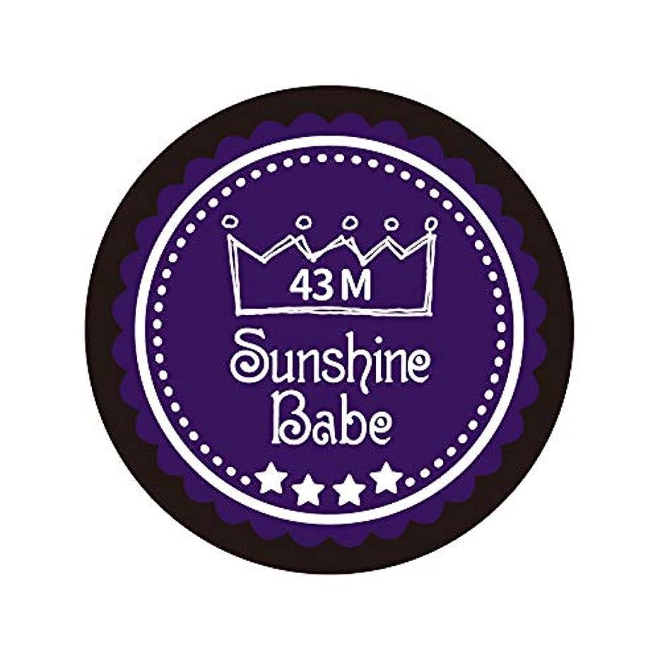 セグメントファウル完全に乾くSunshine Babe カラージェル 43M オータムウルトラバイオレット 4g UV/LED対応