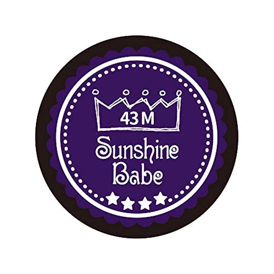 メタルライン欠如状態Sunshine Babe カラージェル 43M オータムウルトラバイオレット 2.7g UV/LED対応