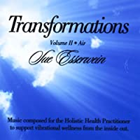 Vol. 2-Transformations: Air