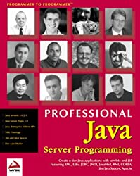Professional Java Server Programming