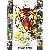 どうぶつえんへいこう【肉食動物・類人猿】 [DVD]
